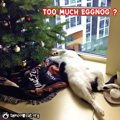 The Cow Cat had too much eggnog on holidays eCard