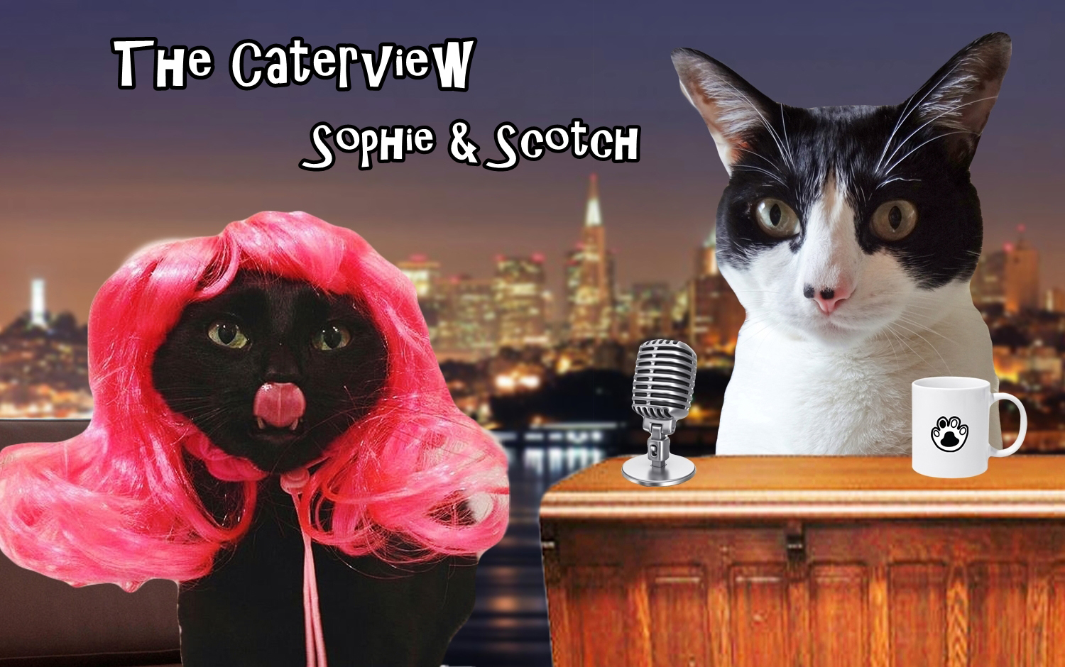 The Caterview Scotch and Sophie 1