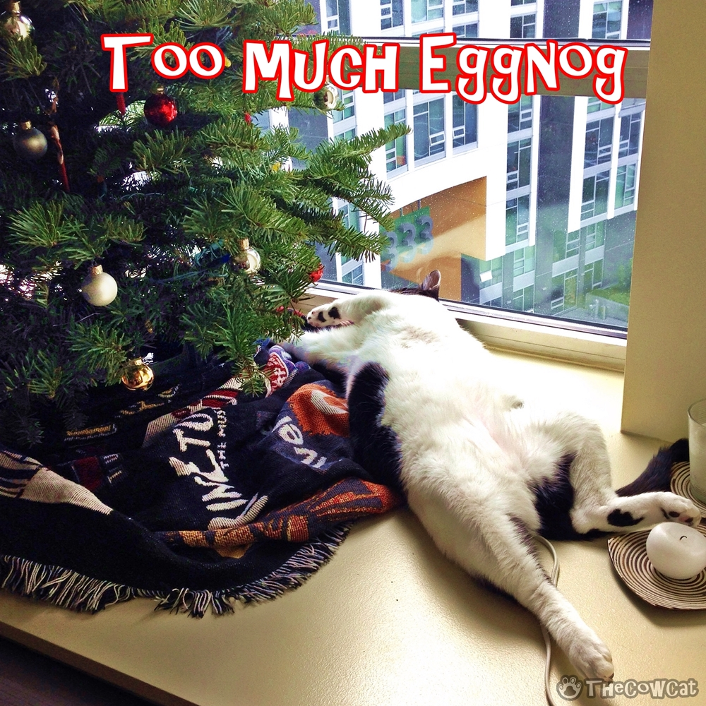The Cow Cat | Too Much Eggnog Funny Holidays Card