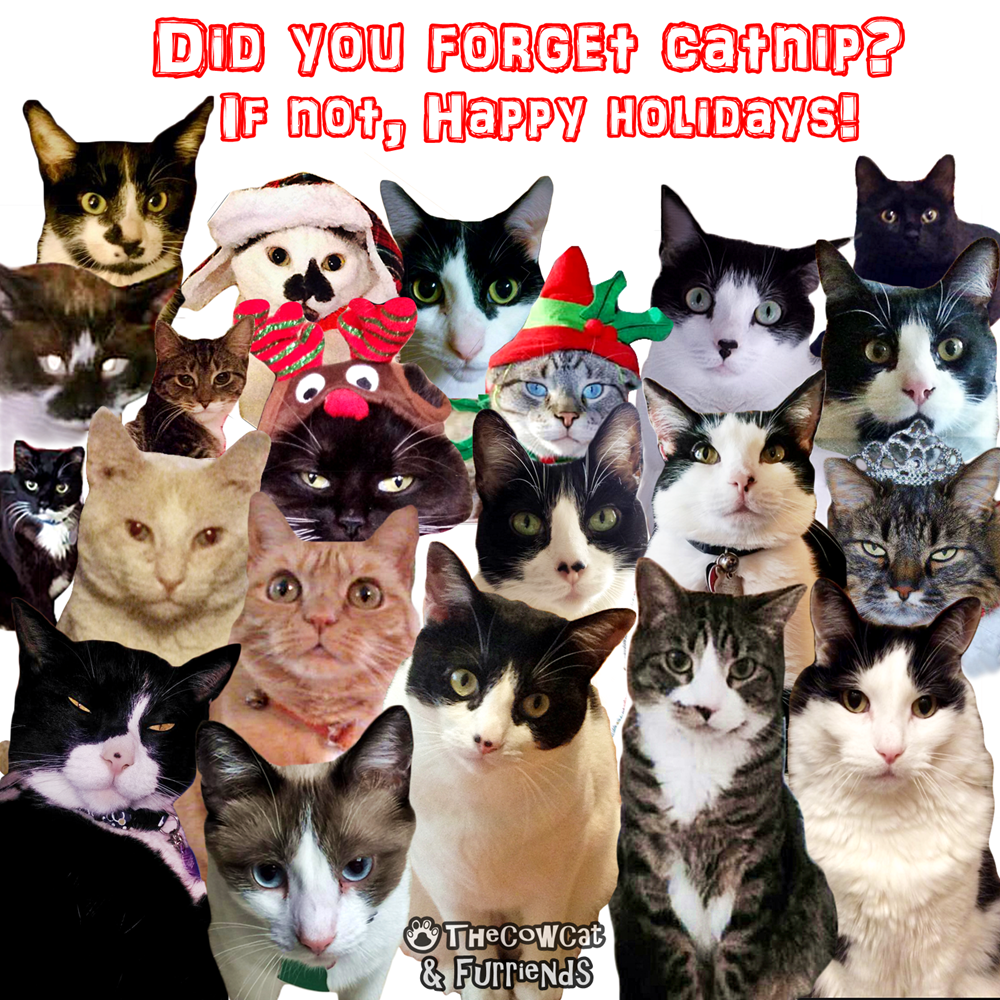 The Cow Cat & Friend | Where Is Our Catnip Funny Holidays Card